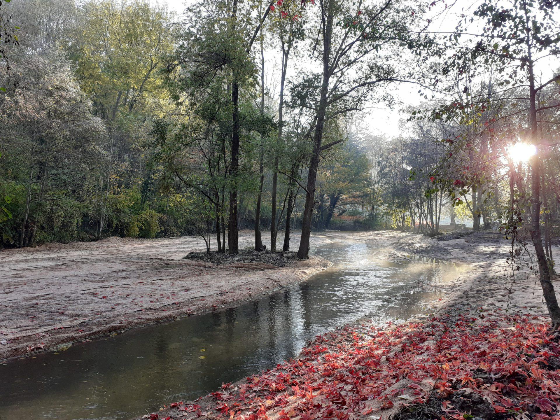 Retour sur la visite pédagogique du chantier de restauration écologique de la rivière École à Pringy
