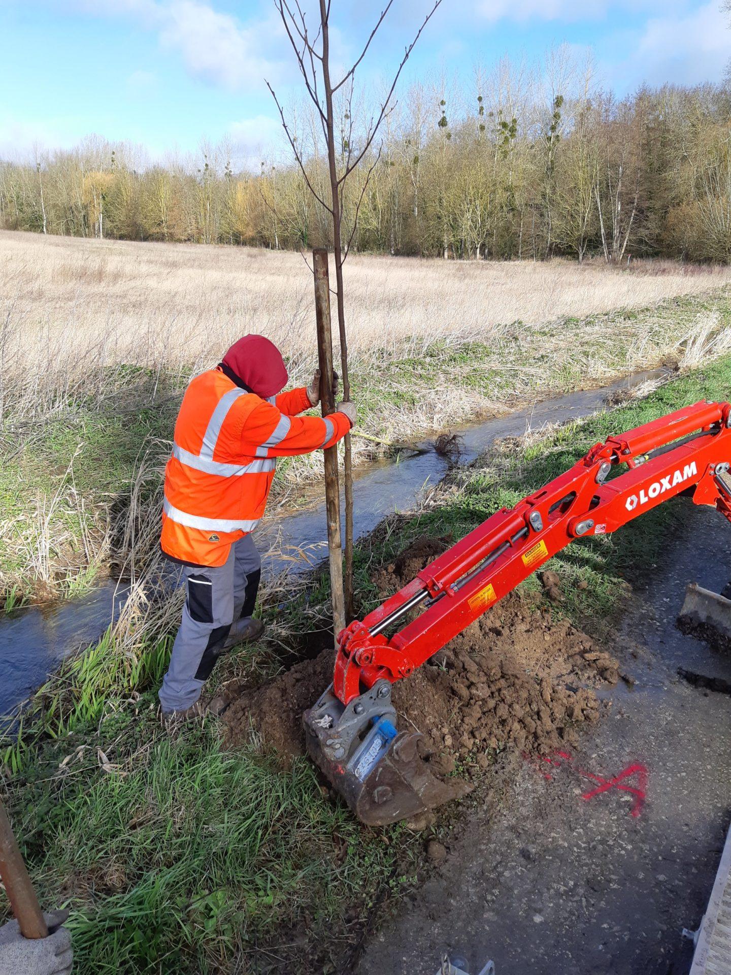 Des chantiers de plantations en bordure de cours d'eau