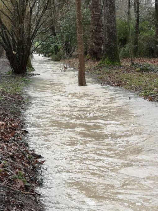 Les crues de début mars 2020 dans le bassin versant de la rivière École